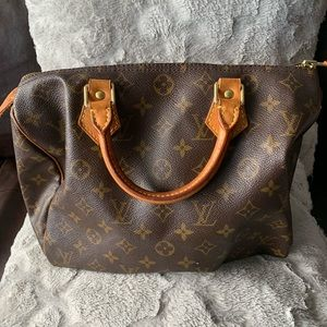 Louis Vuitton Bag - Seedy 30